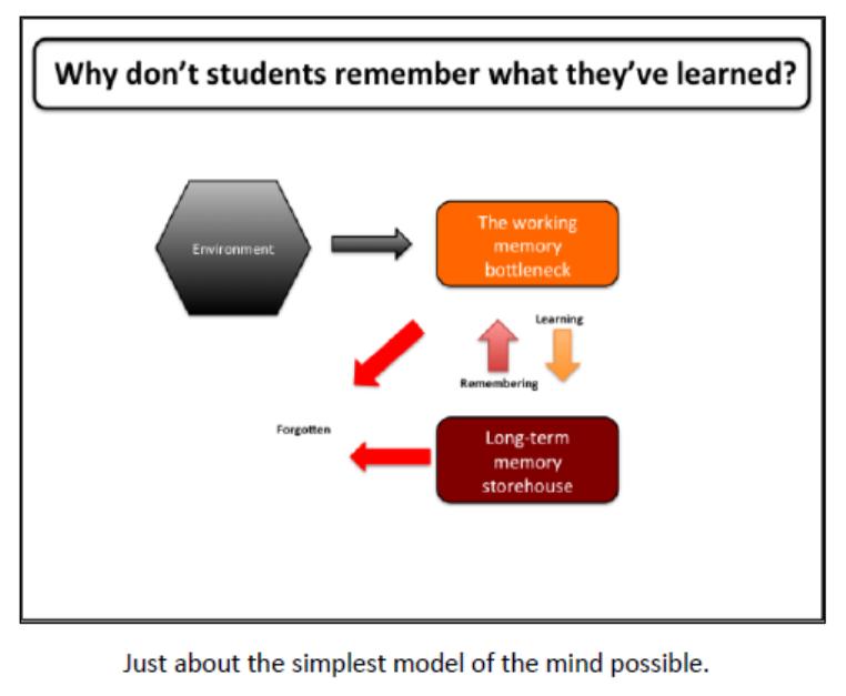 Willingham Memory Model